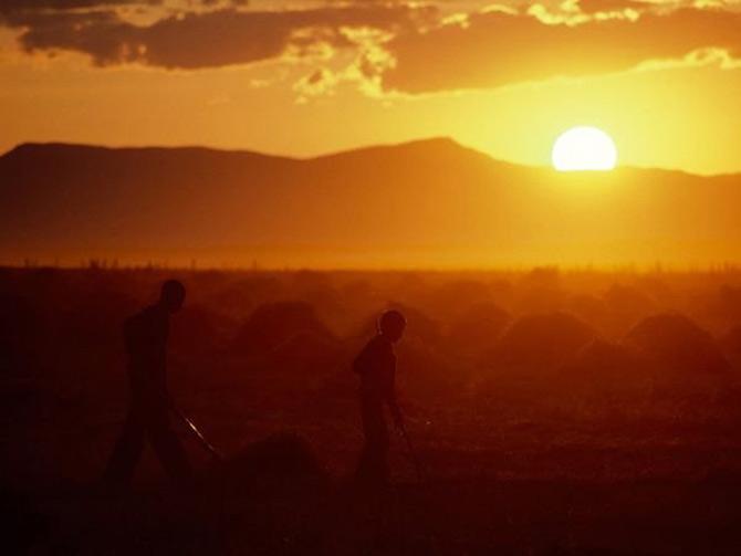 Viata in portocaliu: National Geographic - Poza 8