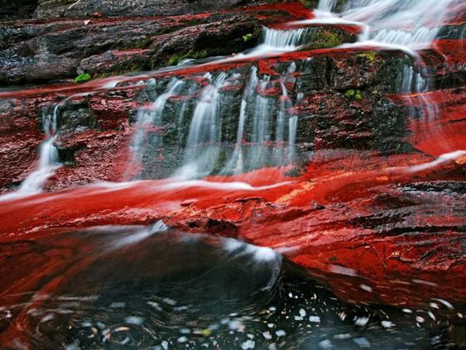 Viata in rosu: National Geographic - Poza 1