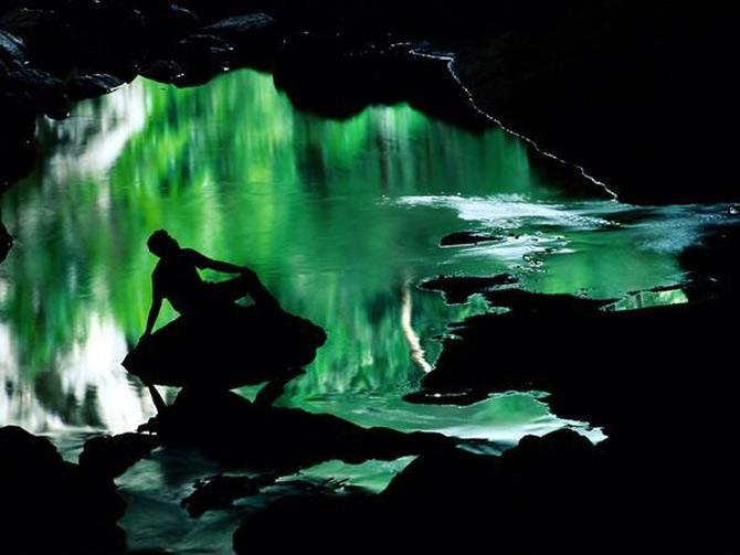 Viata in verde: National Geographic - Poza 2