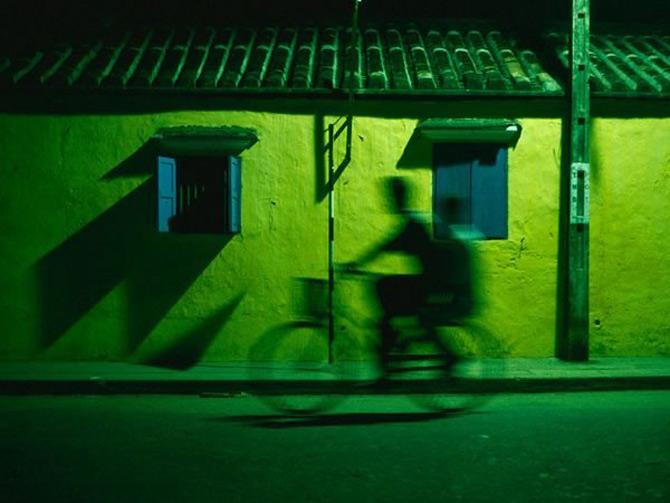Viata in verde: National Geographic - Poza 6