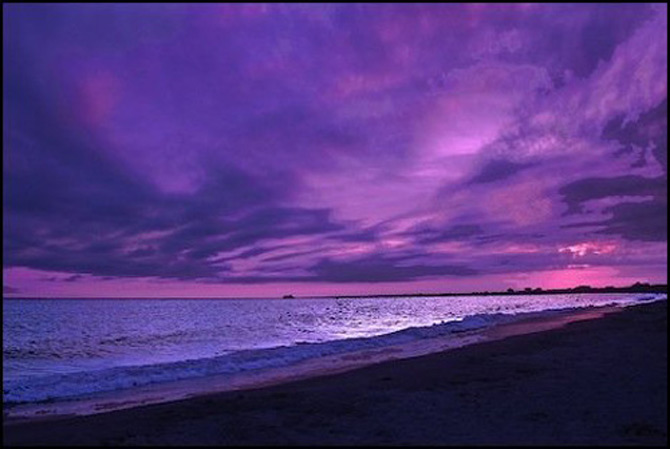 Viata in violet: National Geographic - Poza 9