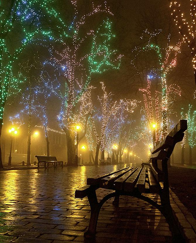 Luminile de iarna ale orasului Odessa - Poza 11