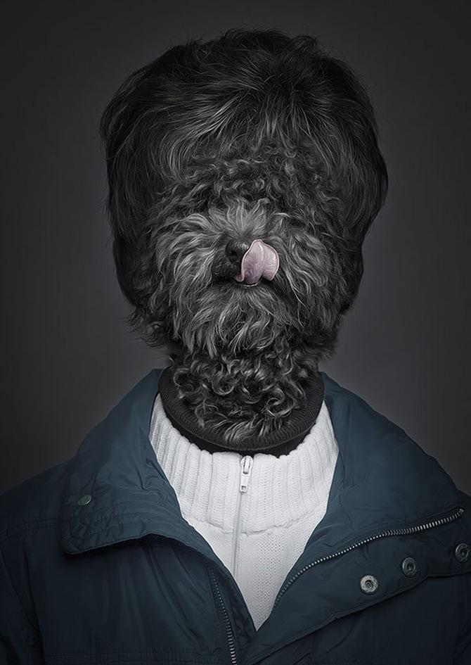 Caini la moda, de Sebastian Magnani - Poza 1