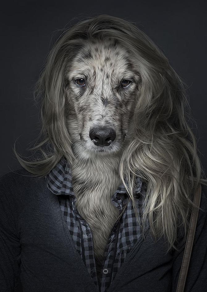 Caini la moda, de Sebastian Magnani - Poza 2