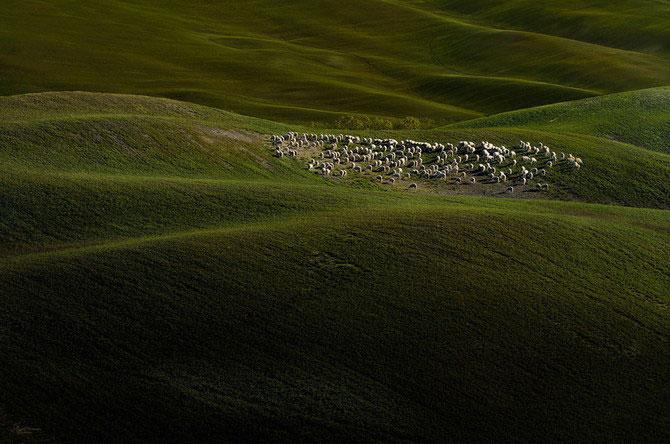 Excursie in Toscana, cu Andreas Bobanac - Poza 12