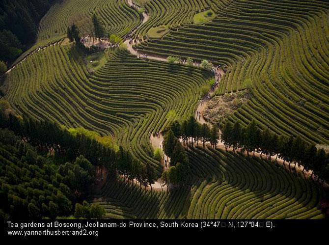 Rusia, Coreea si Argentina, din inaltimile lui Yann Arthus-Bertrand - Poza 8