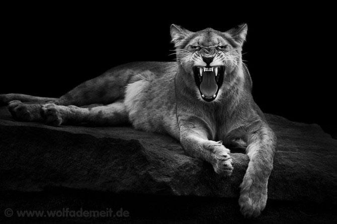 Portrete expresive in alb-negru, de Wolf Ademeit - Poza 8