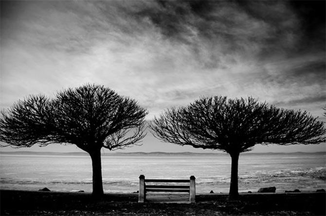 Alte povesti, in alb-negru - Poza 4