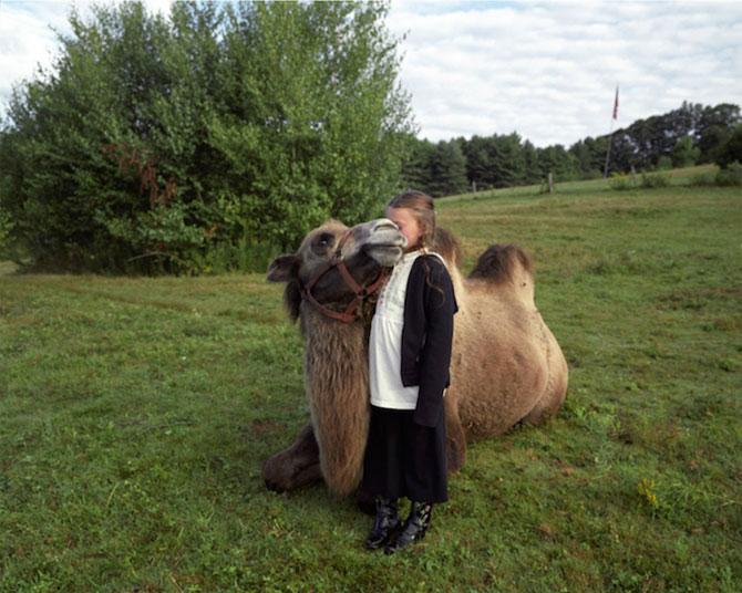 Lumea Ameliei: Adolescenta si animalele, de Robin Schwartz - Poza 8