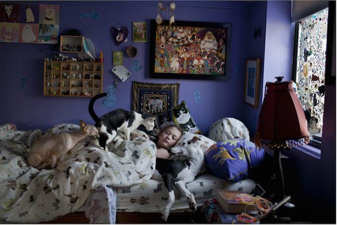 Lumea Ameliei: Adolescenta si animalele, de Robin Schwartz - Poza 10