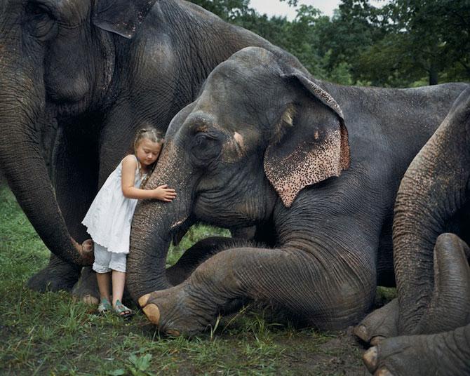 28 de super poze cu fetita care iubeste toate animalele - Poza 1