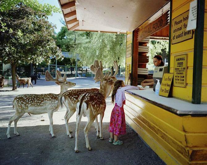 28 de super poze cu fetita care iubeste toate animalele - Poza 23