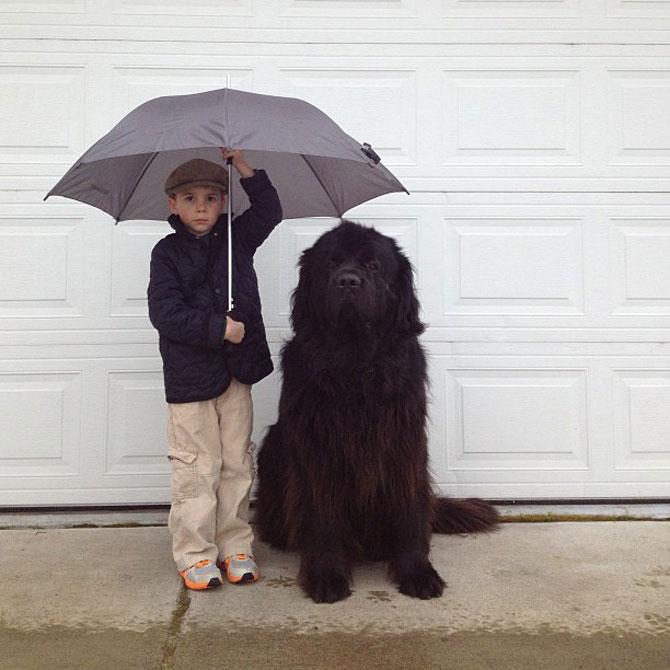 Julian si Max: Povestea unei prietenii - Poza 4