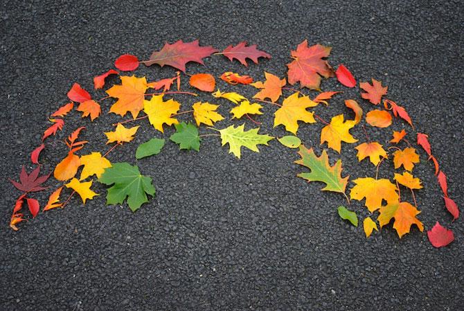 10 curcubee din frunze de toamna - Poza 3