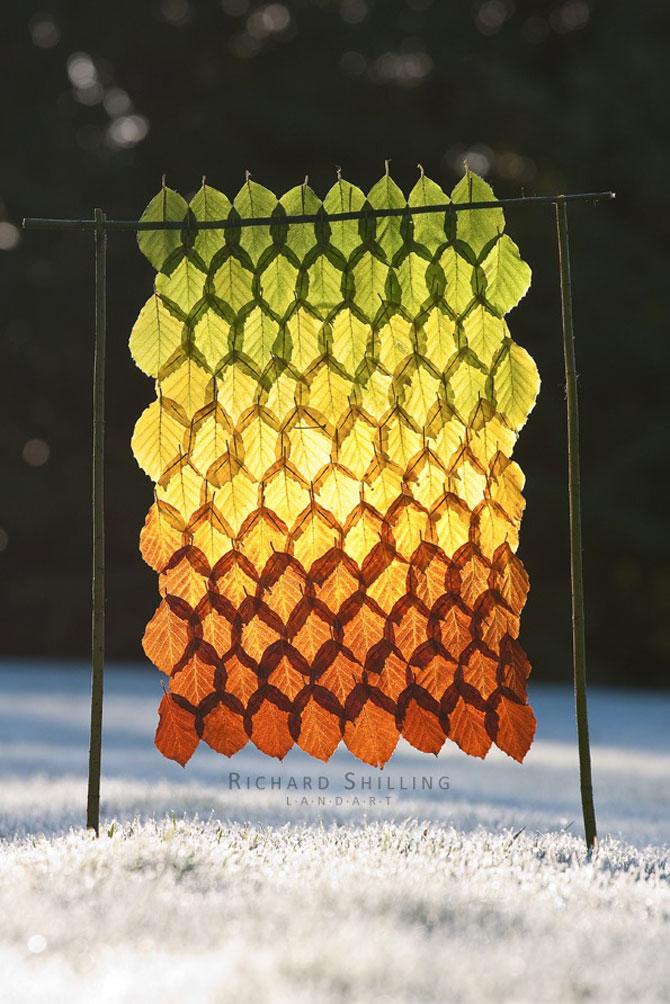 10 curcubee din frunze de toamna - Poza 10
