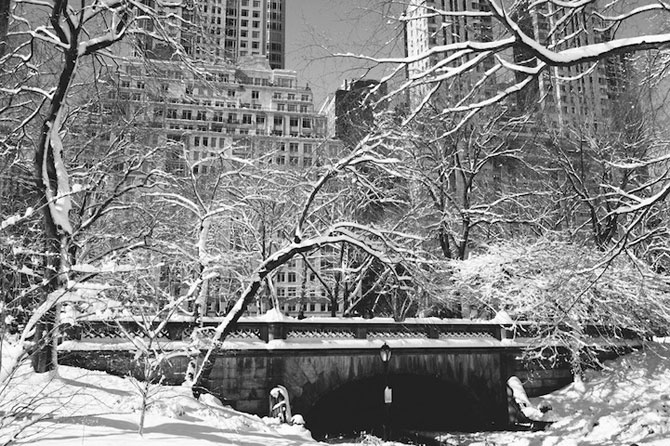 Central Park, New York, dupa viscol - Poza 4