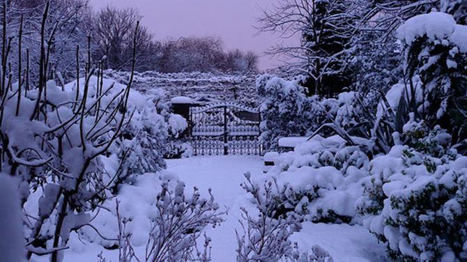 Cat de mult poti sa iubesti iarna? - Poza 1
