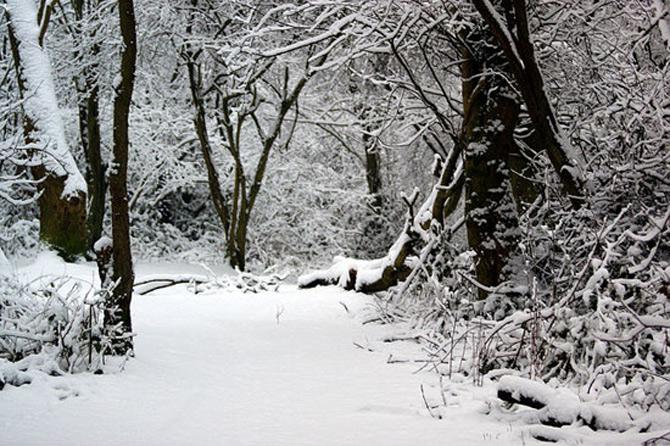 Cat de mult poti sa iubesti iarna? - Poza 2