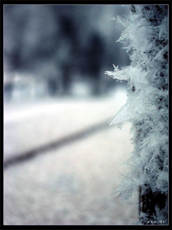 Cat de mult poti sa iubesti iarna? - Poza 9