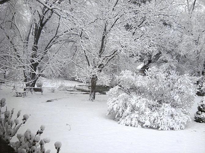 Cat de mult poti sa iubesti iarna? - Poza 14