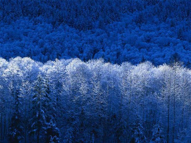 Cat de mult poti sa iubesti iarna? - Poza 15