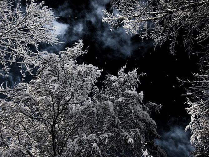 Cat de mult poti sa iubesti iarna? - Poza 19