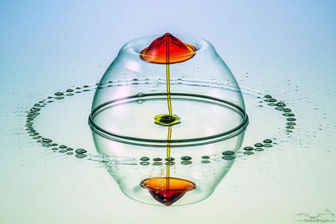 Culorile fascinante ale apei, la microscop - Poza 1