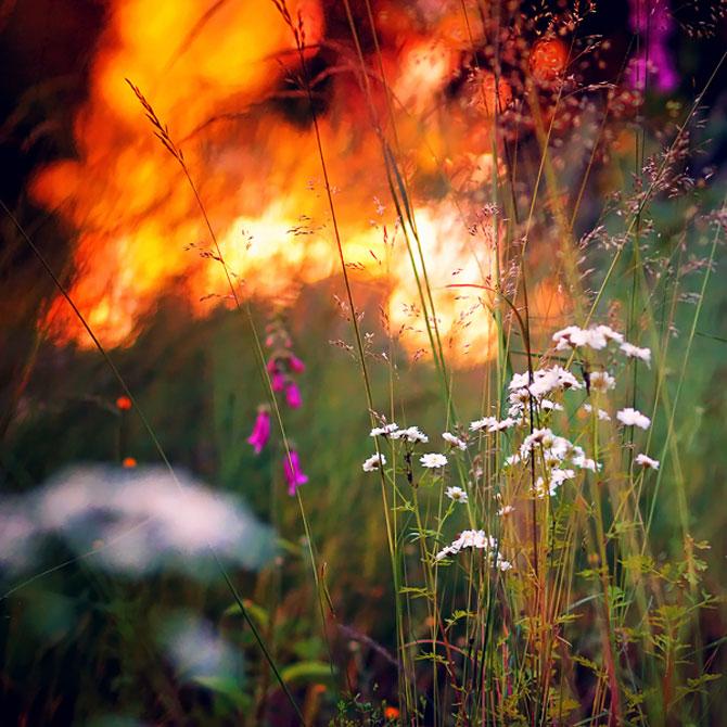 20 de fotografii cu frumusetile fiecarui anotimp - Poza 10