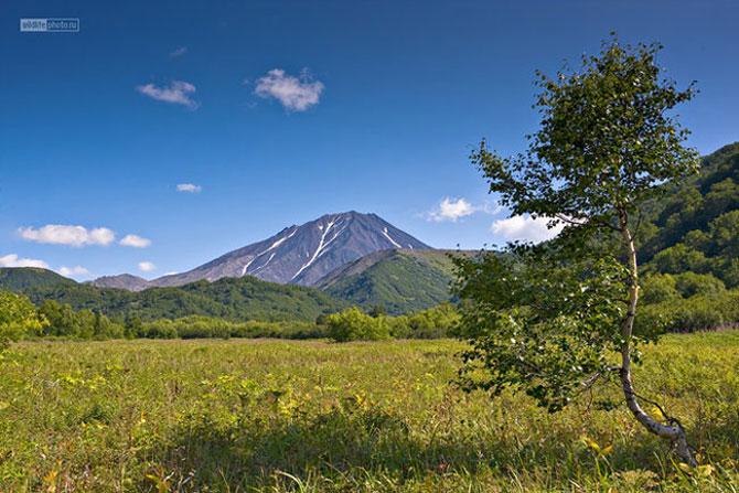 Peisajele Rusiei de basm, aduse la realitate - Poza 10