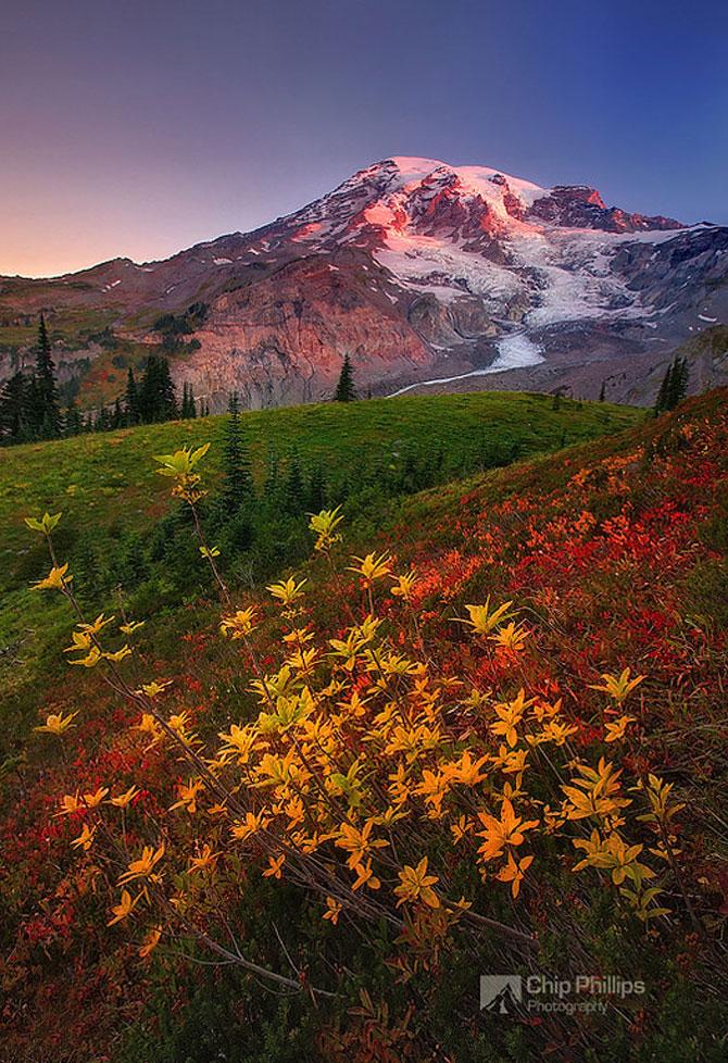 22 de peisaje minunate, de Chip Phillips - Poza 7