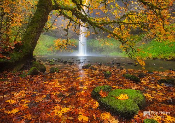 22 de peisaje minunate, de Chip Phillips - Poza 12