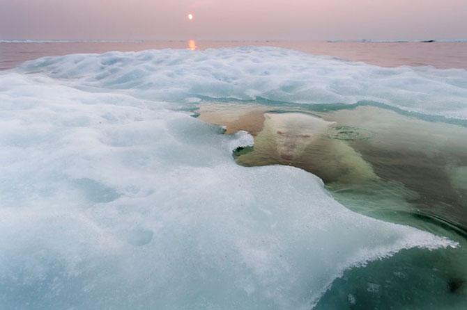 Superbele peisaje inghetate ale lui Paul Souders - Poza 1