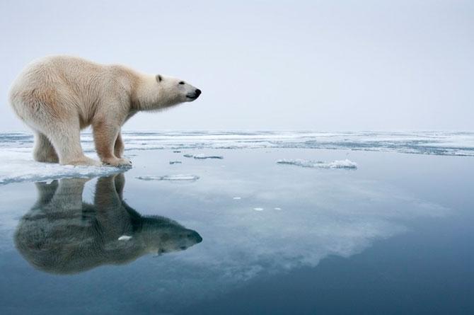 Superbele peisaje inghetate ale lui Paul Souders - Poza 7
