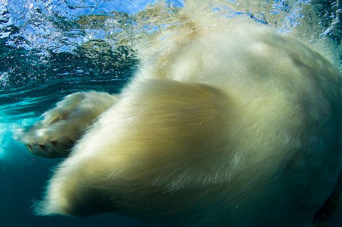 Superbele peisaje inghetate ale lui Paul Souders - Poza 10