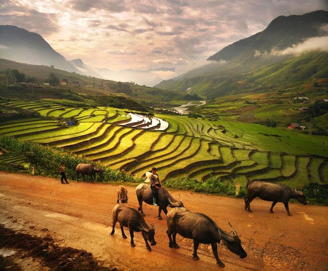 Calatorie in Asia prin portrete superbe - Poza 8
