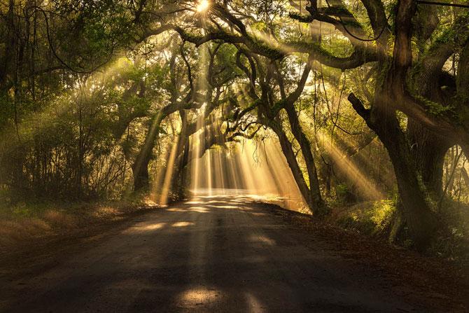 15 fotografii cu raze care strapung norii - Poza 3