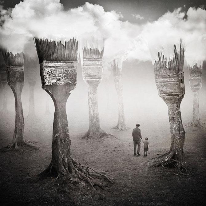 Noi colaje suprarealiste de la Sarolta Ban - Poza 1
