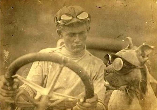 Poze cu pisici si catei de-acum un secol - Poza 5