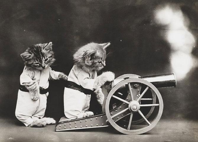 Poze cu pisici si catei de-acum un secol - Poza 8
