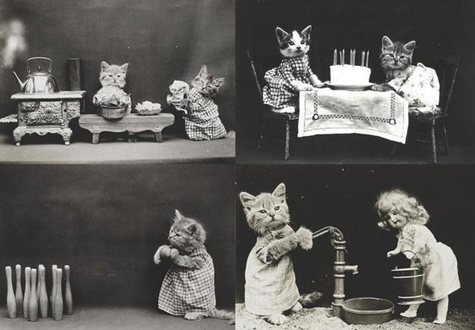 Poze cu pisici si catei de-acum un secol - Poza 11