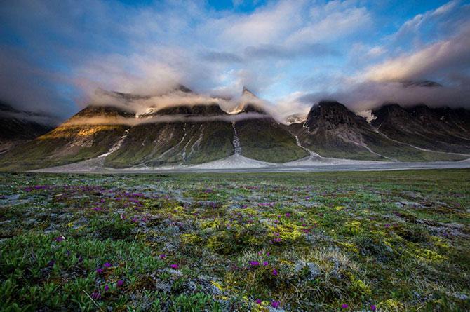 Frumusetea tinuturilor sub-arctice, cu Dave Brosha - Poza 4