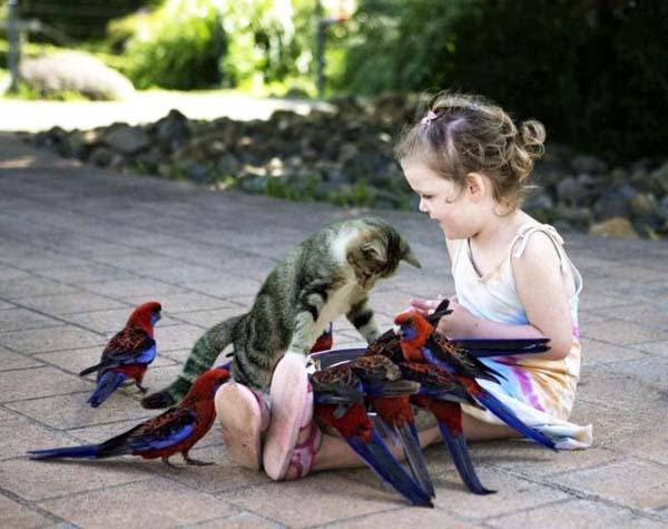 17 poze cu animale fericite - Poza 13