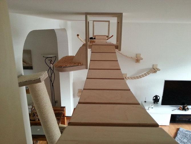 O camera de joaca numai pentru pisici - Poza 2