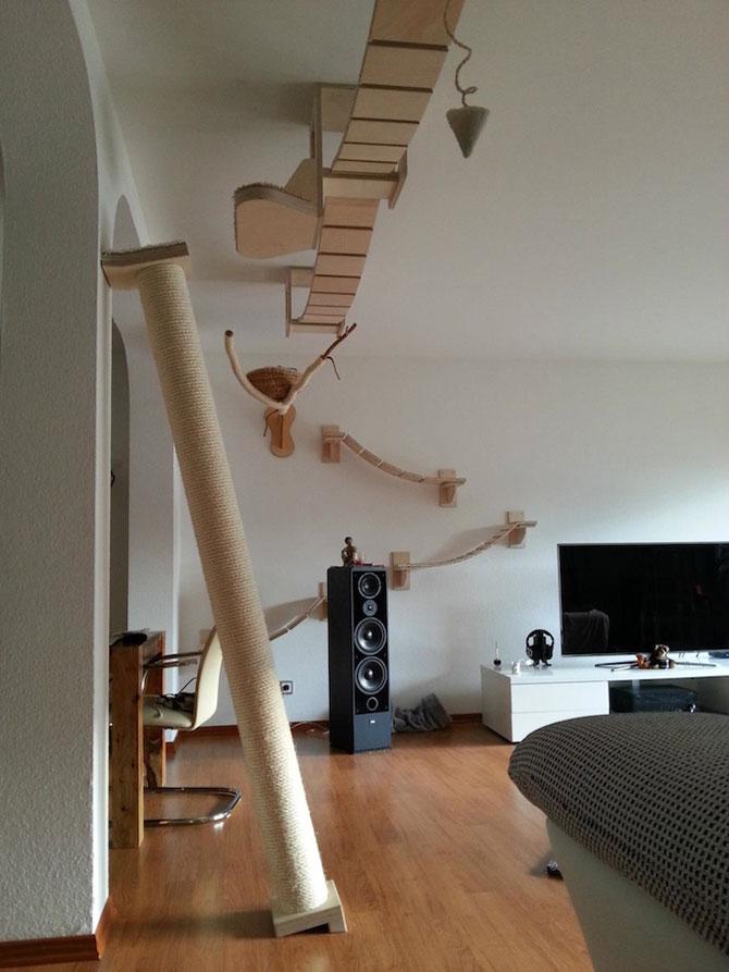 O camera de joaca numai pentru pisici - Poza 3
