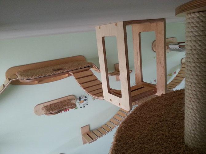 O camera de joaca numai pentru pisici - Poza 4