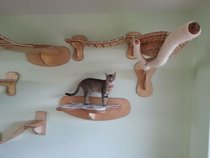 O camera de joaca numai pentru pisici - Poza 6