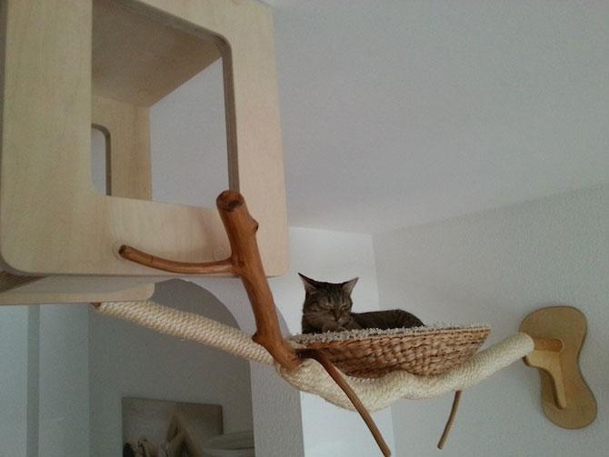 O camera de joaca numai pentru pisici - Poza 7