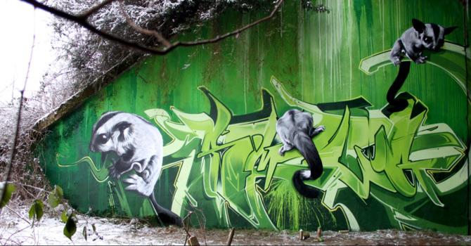 Graffiti pentru intelectuali, cu SmugOne - Poza 14