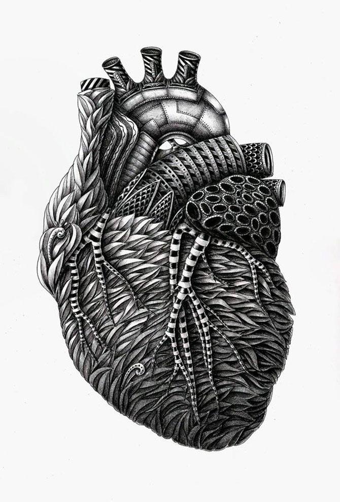Grafica anatomie umana Alex Konahin