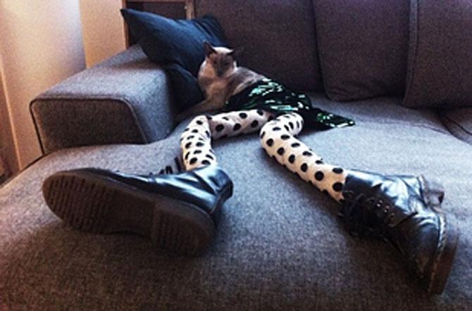 Gucci, pisica in colanti! - Poza 2